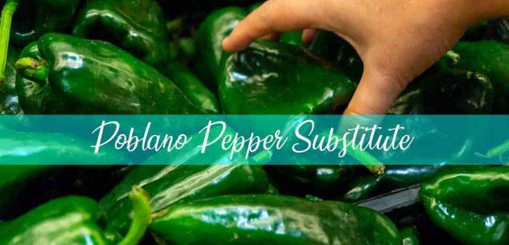 poblano pepper substitute