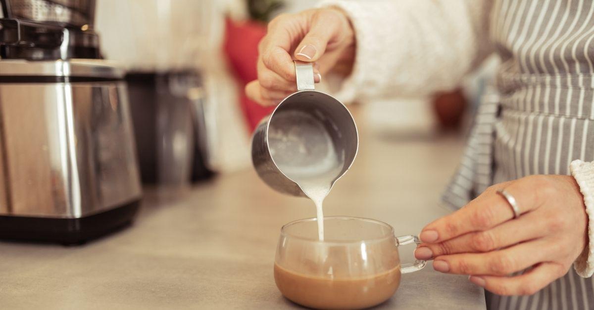 Best Milk Steamer